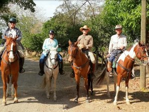 10 Day Old Spanish Trails and Pacific Beaches Horse Riding Holiday with Monteverde Extension