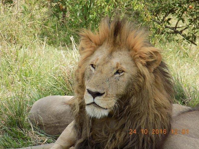 12 Days Group Safaris in Kenya and Tanzania