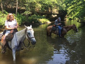 3 Day Trail Boss and Primitive Rawhide Horse Riding Holiday in Shawnee National Forest, Illinois