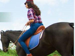 4 Day Horse Riding Holiday in Nashik
