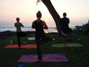 8 días nadar con delfines salvajes, meditación y yoga en Hawai, EUA