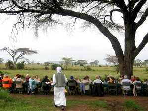 7 Days Picturesque Tanzania Safari