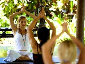 6 días retiro de yoga para profundizar tu práctica en Bali, Indonesia
