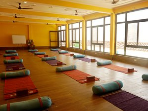 24 Day 200-Hour Scholarship All in One Vinyasa and Hatha Yoga Teacher Training in Rishikesh