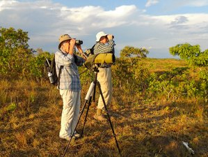 7 Days Wildlife Tour in Pantanal Conservation Area Brazil