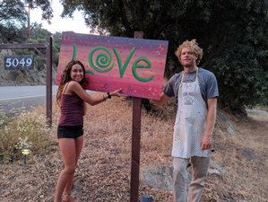 6 Day Find Your Secret Key: Silent Meditation, Yoga, and Detox Retreat in Santa Ysabel, California