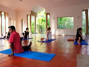 15-Daagse Panchakarma Detox, Meditatie en Yoga Retraite in Karnataka, India