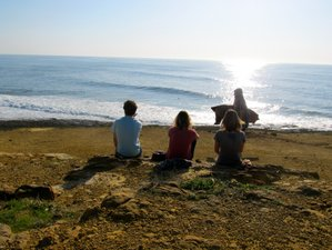 8 Days Gourmet Food, Surf & Yoga Holiday in Portugal