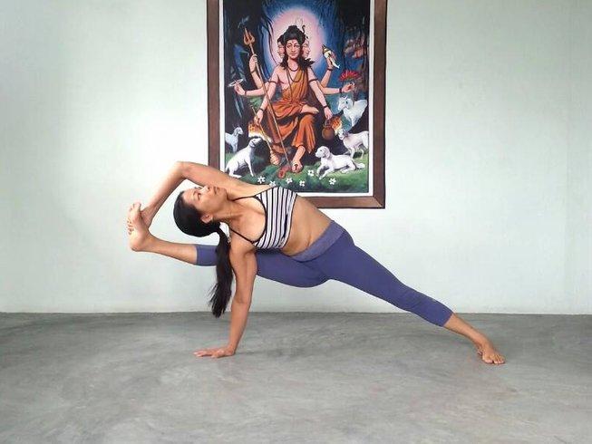 2 meses de profesorado de yoga 500 horas en India