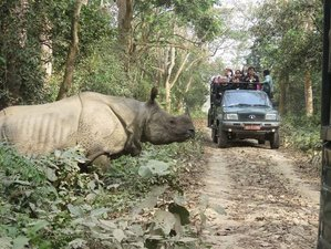 4 Day Jungle Safari in Chitwan National Park, Subarnapur