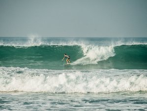 7 Days Outstanding Weligama Surf Camp in Weligama, Sri Lanka