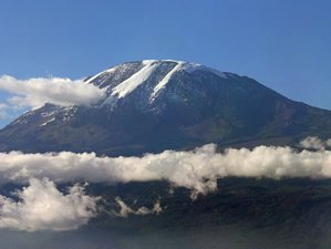6 Days Umbwe Route Kilimanjaro Safari and Trekking