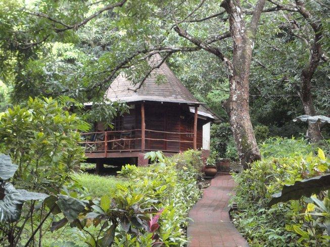 7 Days Surf and Yoga Retreat in Montezuma, Costa Rica