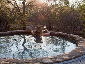 5 Days Best of South Africa Luxury Safari in Kruger National Park and Balule Nature Reserve