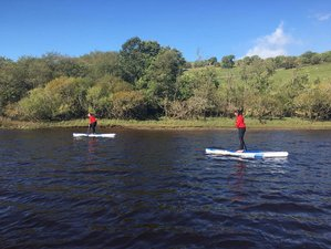 3 Day Alpacas Trekking and Feeding, SUP, and Yoga Holiday in Richmond, England