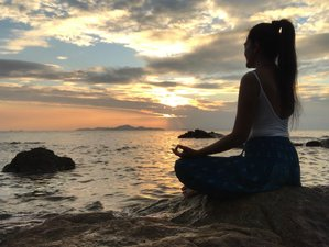 28 Day 200-Hour Online Self-Healing Yoga Teacher Training and Stretching
