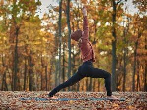 4-Daagse ´(Her)vind je Energie en Flow in de Winter´ Stroom Yoga Retreat in Twente