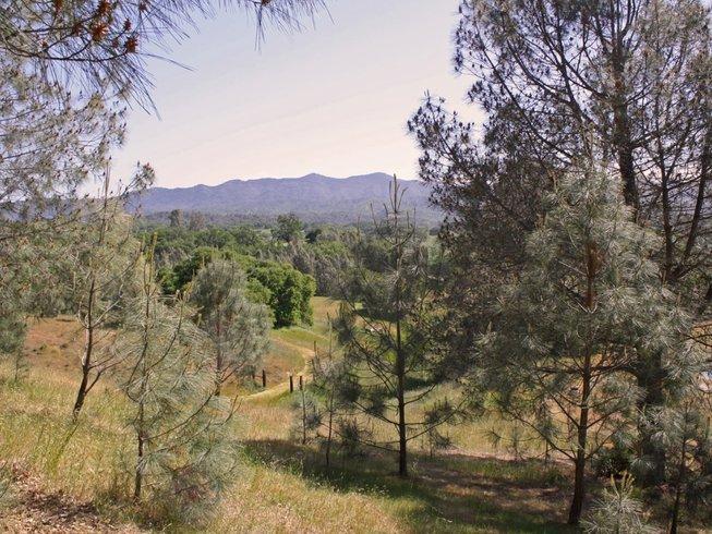 3 Days Peace, Quiet, and Yoga Retreat in California