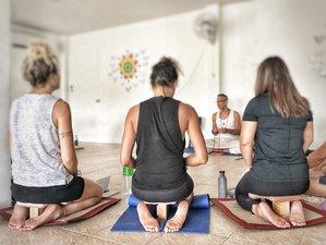 12 Day Emotional Detox, Yoga and Meditation, Transformative Retreat in Koh Phangan, Surat Thani