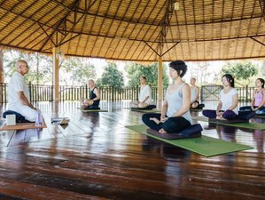 3 Days Meditation and Magic Detox Retreat in Chiang Mai, Thailand