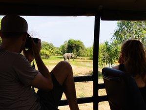 2 Days Astonishing Safari in Yala National Park, Sri Lanka