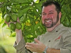 5 Days St. Lucia Mango Themed Culinary Holiday