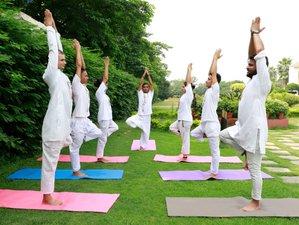 26 Day 200 Hours Multi Style Yoga Teacher Training in Rishikesh