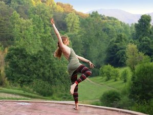 15 Days 100-Hours Yoga Teacher Training in USA