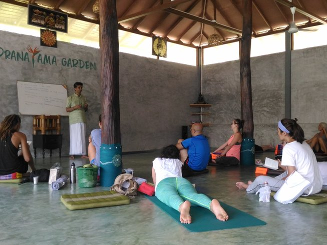 30 Days 200-Hour Multi-Style Yoga Teacher Training in Koh Phangan, Thailand