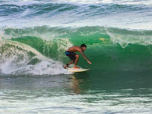 8 Day Coconut Coast Surf Camp in Sitio do Conde Beach, Bahia