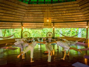 7 Day Healing From Burnout Meditation, Breathwork, and Yoga Retreat in Cahuita, Limon Province
