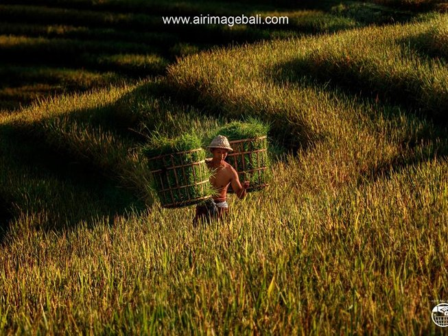 4 Days Heart-Opening Balinese Cultural Experience and Yoga Retreat in Bali