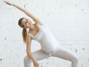 29 Day 85-Hour Online Prenatal Yoga Teacher Training