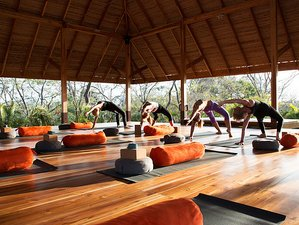8 Days Goddess Healing Yoga Retreat in Costa Rica