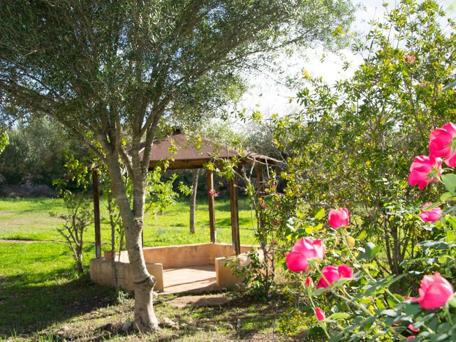 6 Days Raw Food and Yoga Retreat in Mallorca, Spain