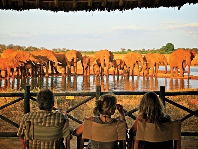 6 Days Mara, Nakuru, and Amboseli Safari in Kenya