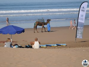 7 Day Adrenalin Surf Camp in Tamraght, Agadir