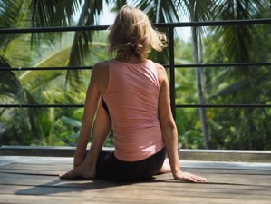 7 Day Tropical Island Relaxation and Yoga Holiday in Galle, Southern Province