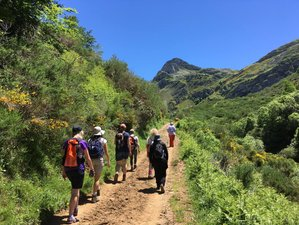 7 Day Mindful Walking and Nature Immersion Retreat in Valle de Lago, Asturias