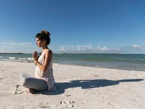 Self-Paced 85-Hour Online Prenatal Yoga Teacher Training