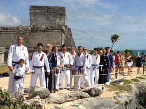 10 Days Brazilian Jiu Jitsu Training in Florida