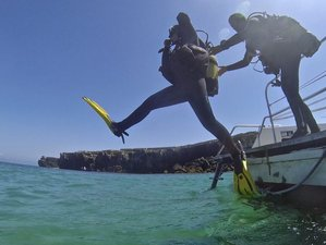 14 Day Beginner Spanish Course and Diving Camp in Tarifa, Andalusia