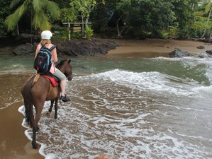 4 Day Luxury Stay and Horse Riding in Rio Claro Beach, Drake Bay