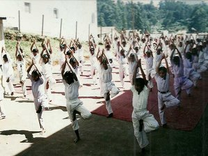 10 Days Rejuvenating Kaya Kalpa Yoga Retreat in Tamil Nadu, India