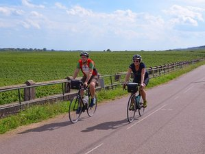 6 Day Guided Wine and Biking Tour in Burgundy, France