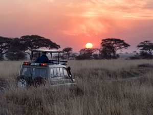 10 Days Africa Safari and Luxury Yoga Holiday in South Africa and Botswana