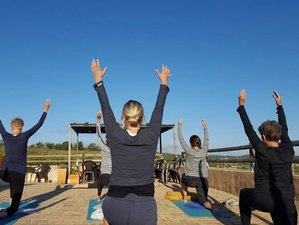 8 Days Vinyasa Flow Yoga Retreat in Mallorca, Spain