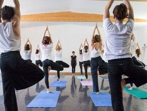 28 Days, Level 1 Yoga Teacher Training in Mysore, India