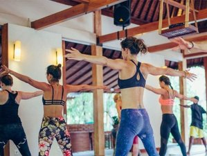 4 Days 32-Hour Intensive Aerialyin Yoga Teacher Training Bali in Canggu