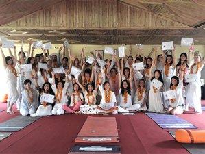 28 Days 200-Hours Yoga Teacher Training in Rishikesh, India
